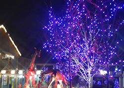 holiday lights utilizing led indoor outdoor commercial christmas lights